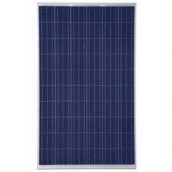 Cinco Solar Panel 50 watt