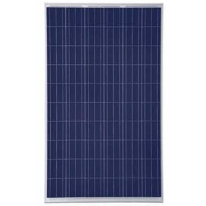 Cinco Solar Panel 50 watt